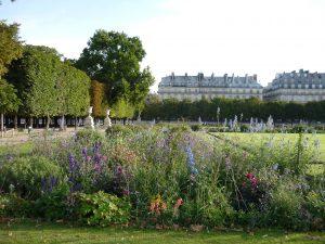 Parterres des jardins des Tuileries en 2010 © Michel Audouy
