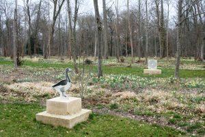 Au XVIIIe siècle, le jardinier des Montmorency a planté beaucoup de bulbes de narcisses. On les retrouve ici aujourd'hui sur le jeu de l'oie redécouvert dans les années 1980 et faisant l'objet d'une profonde restauration © J.-F. Coffin.