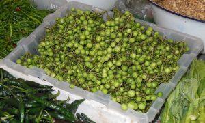 Photo n°2 : fruits de Solanum torvum sur un marché en Thaïlande (diamètre ~ 1cm) © INRA