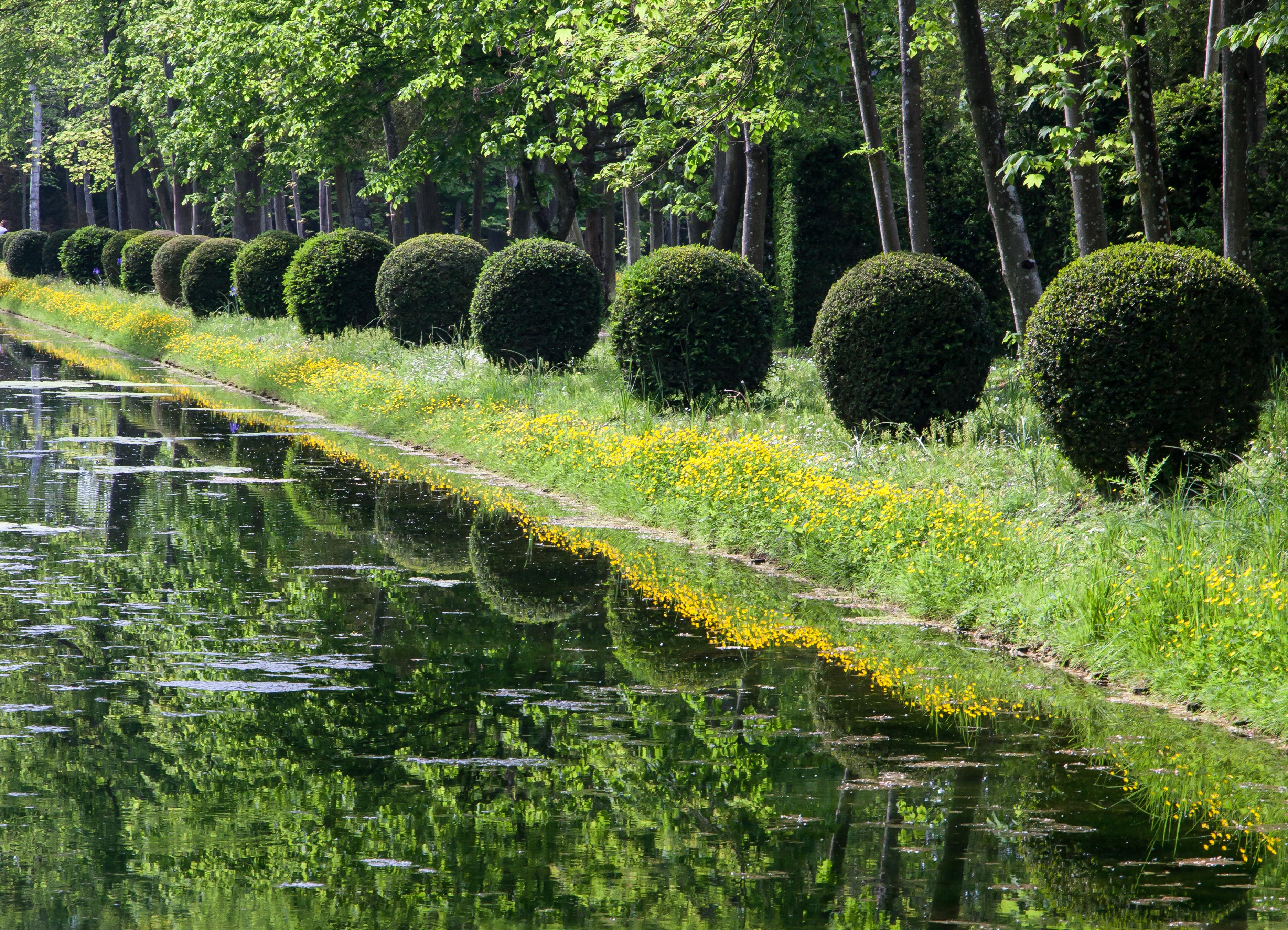 Jardins Contemporains pour conjuguer le passé au présent : les jardins historiques entre