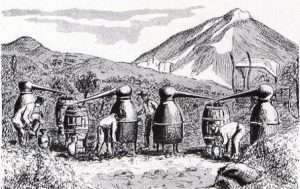 Distillation de lavande en Haute Provence, illustration dans La Parfumerie Moderne, 1908