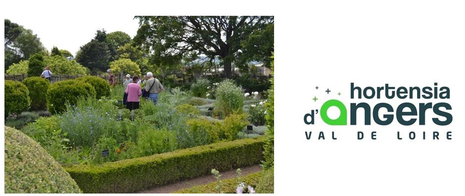Le jardin des simples a été également embelli avec les plantes anciennes et des sélections de l'Iteipmai. Des visites avec tablettes sont en préparation, associant les plantes du jardin et celles des Tapisseries de l'Apocalypse. Automne 2016, un jardin de rose et un jardin de genêt seront créés selon le même principe.