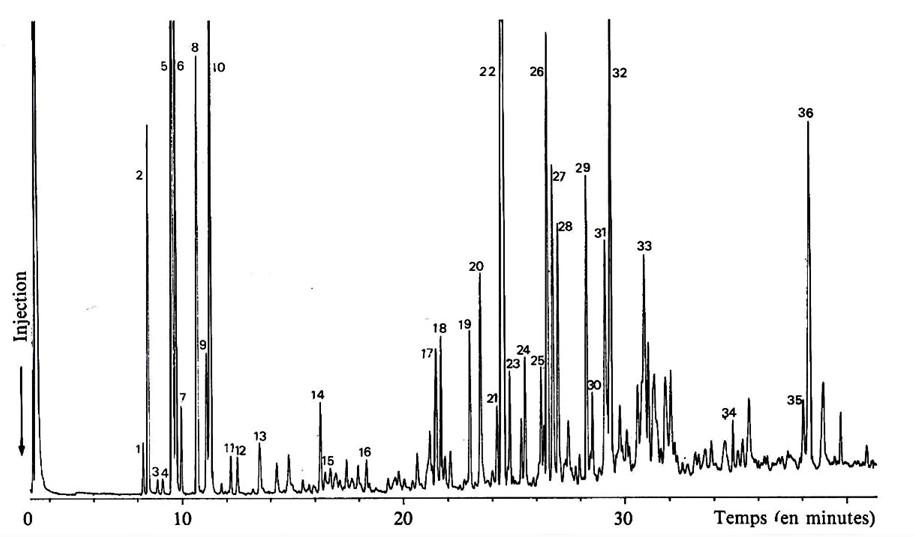+ Chromatogramme du Poivre