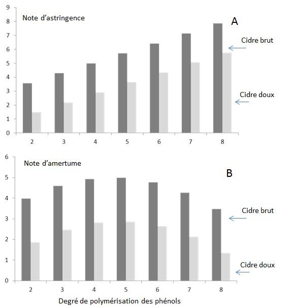 Effet du degré de polymérisation des phénols sur l'astringence (A) et l'amertume (B) chez un cidre brut (fructose 20 g/L,, éthanol 5,7%) et chez un cidre doux (fructose 60 g/L, éthanol 2,7%). Cidre = équivalent cidre.