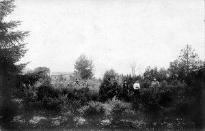 J.H Fabre dans son jardin vers 1900 - © D.R.