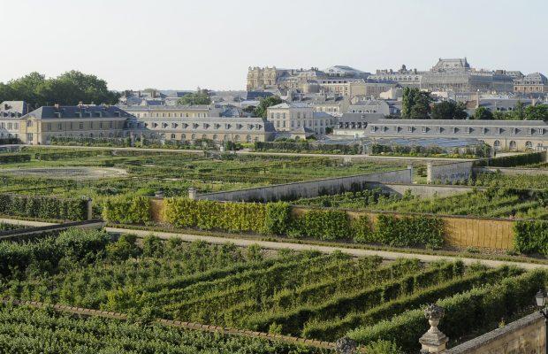 Le potager du roi versailles jardins de france - Le potager du roi ...