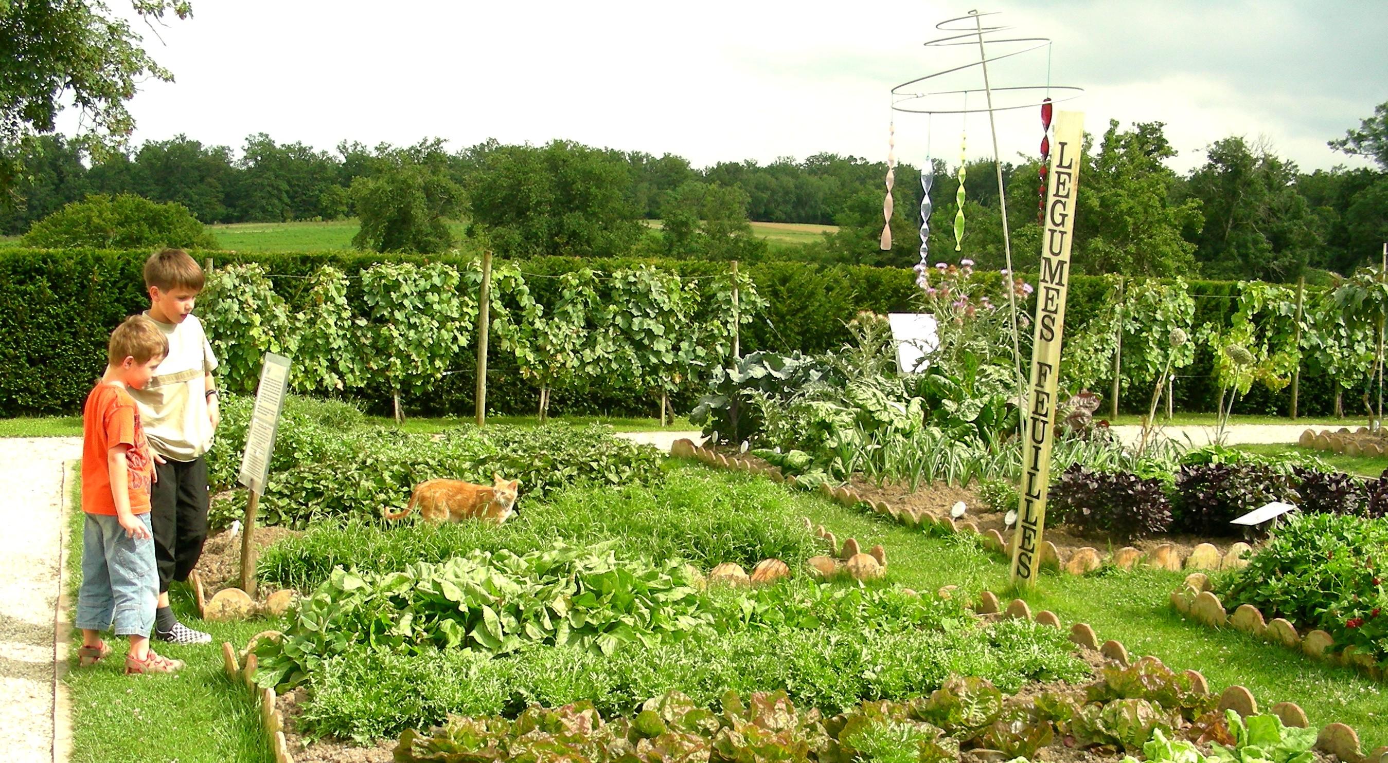 Un jardin ouvert à la visite - © Oh ! Légumes Oubliés