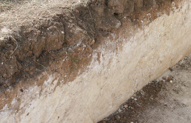 La fertilité physique, chimique et biologique est fondée sur les constituants du sol en quantité très variable comme le montre ce profil d'une terre agricole sur roche mère crayeuse - © J.-F. Coffin