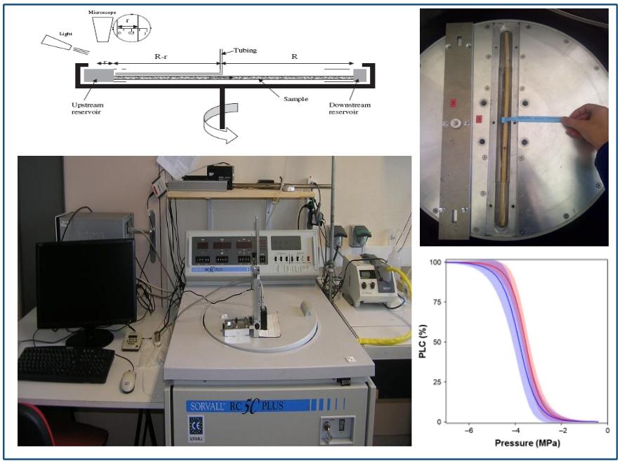 Figure 2. En haut : schéma décrivant le fonctionnement du Cavitron avec son rotor de 27 cm, ces deux réservoirs d'eau et sa caméra (gauche) et photo d'une branche de conifère placé au sein d'un rotor standard de Cavitron. En bas : vue d'ensemble d'un Cavitron à gauche et d'une courbe de vulnérabilité à droite - © S. Delzon