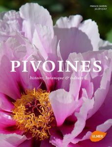 pivoines_joly_sadrin