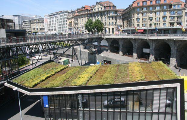 Tests de végétalisation de toitures à Lausanne - © J.-F. Coffin