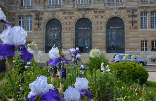 des vivaces et des bulbes, Hôtel de ville