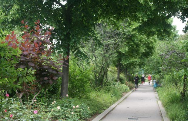 Coulée verte Paris Qui peut s'imaginer que cette végétation luxuriante, fréquentée par des joggers, se situe à 10 mètres du sol, sur un ancien viaduc ?