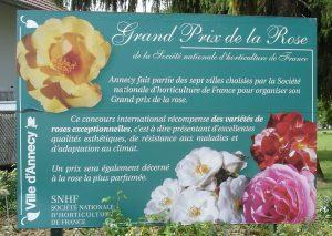 La capacité de tolérance aux maladies est l'un des critères pris en compte par le Grand prix de la rose SNHF