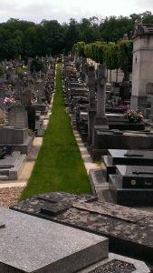 soutien des élus pour rendre effective la transition au « 0 phyto » dans les cimetières versaillais