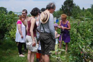 Les participants aux formations sont invités à des travaux pratiques sur le terrain