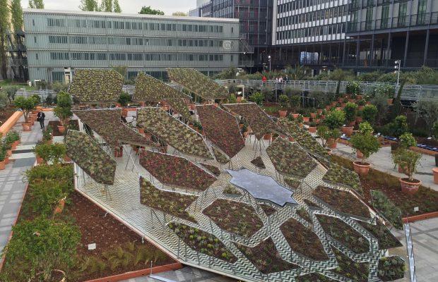 Le polygone étoilé jardin d'Orient