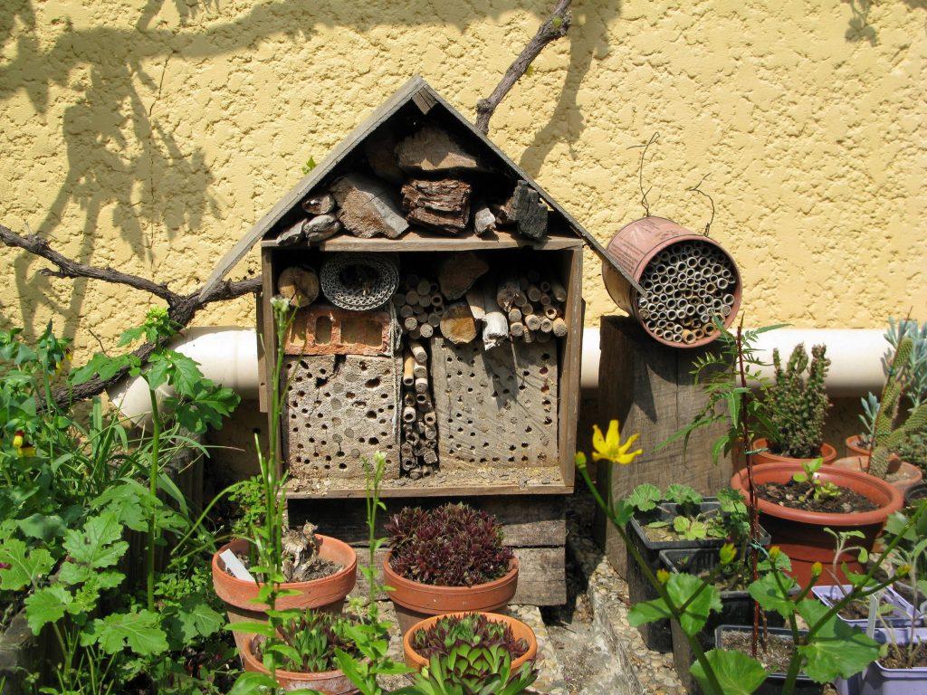 Un petit hôtel à abeilles dans un jardin en Provence avec des tiges creuses et des buches percées. Ce type d'aménagement simple permet d'avoir à domicile des insectes pollinisateurs sauvage pour augmenter la faune locale - © N. Morison, INRA Avignon