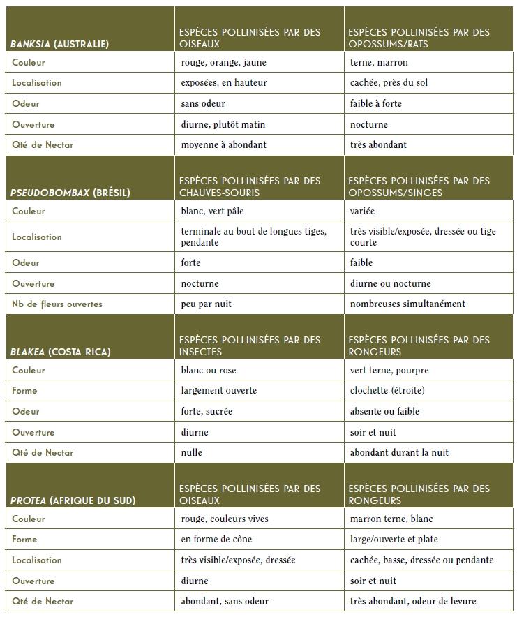 Tableau 2 : Principaux caractères floraux d'espèces