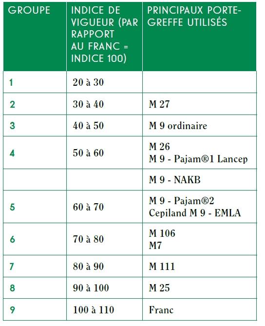 classification des principaux porte-greffes du pommier