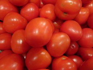 Le lycopène, pigment rouge de la tomate, participerait à la protection contre les risques cardiovasculaires - © J.-F. Coffin