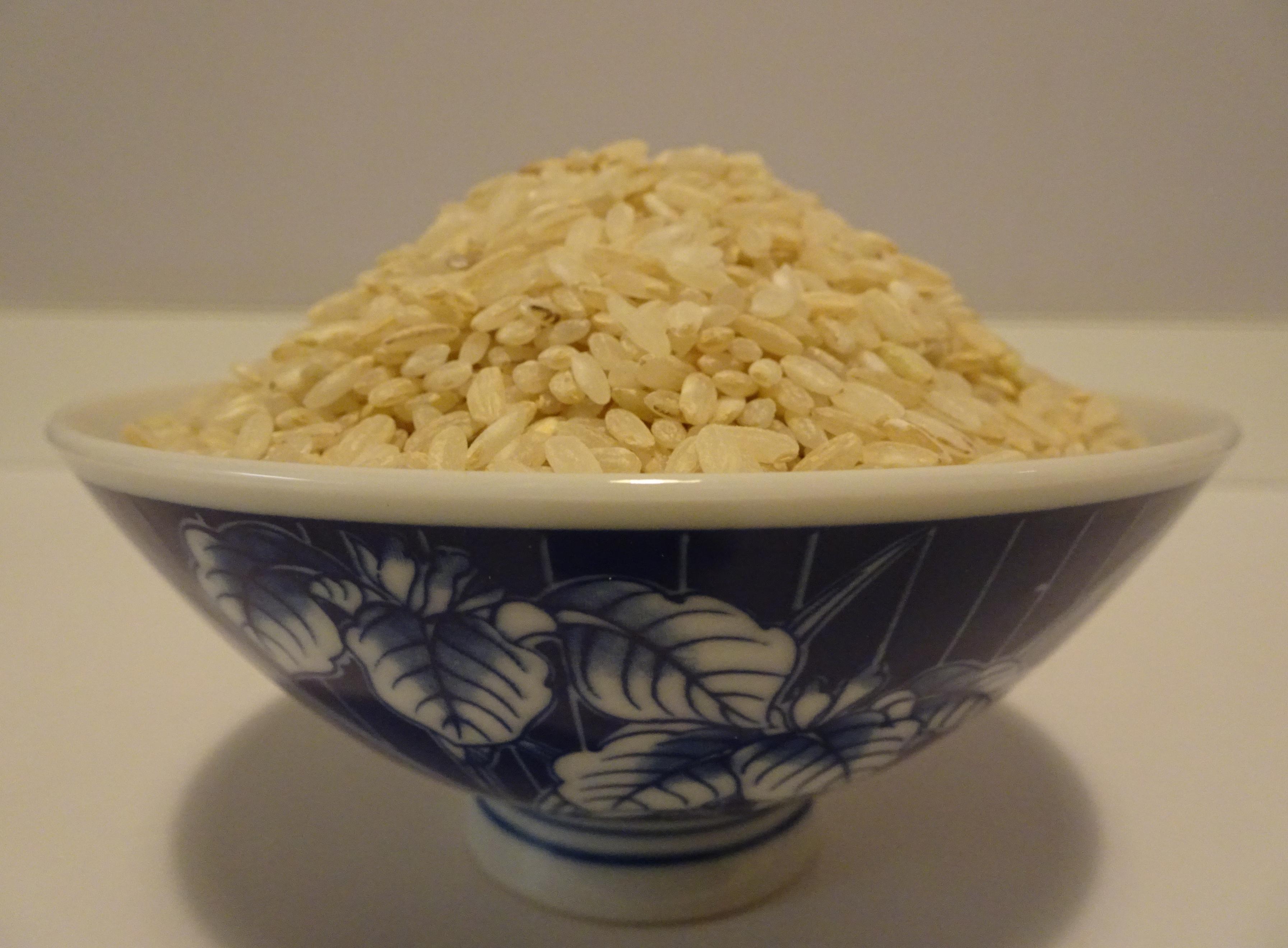La consommation exclusive de riz privé ses enveloppes est une cause du béribéri - © J.-F. Coffin