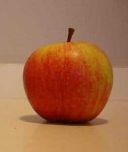 Les fruits climactériques, comme les pommes et les poires, continuent leur maturation après cueillette - © J.-F. Coffin