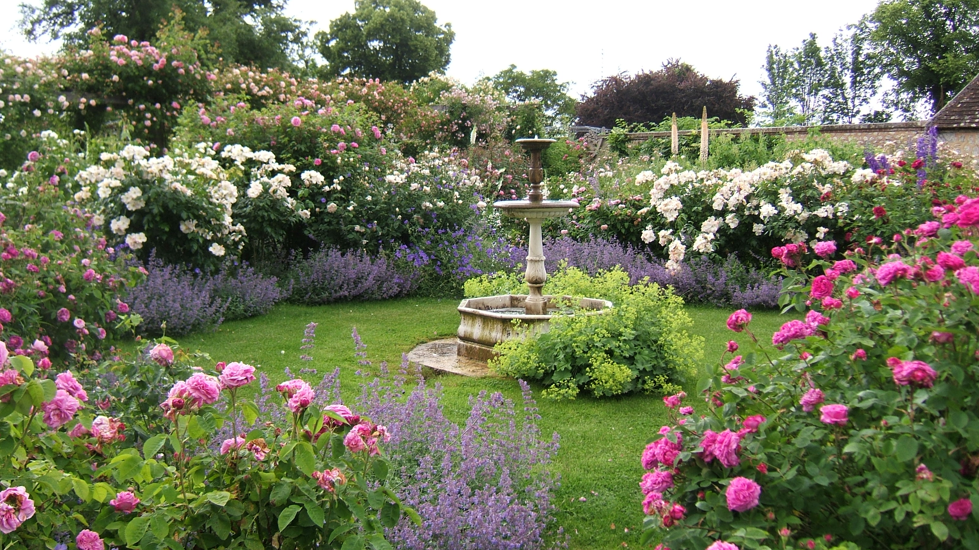 Que faire au jardin en novembre insta green que faire - Jardin novembre ...