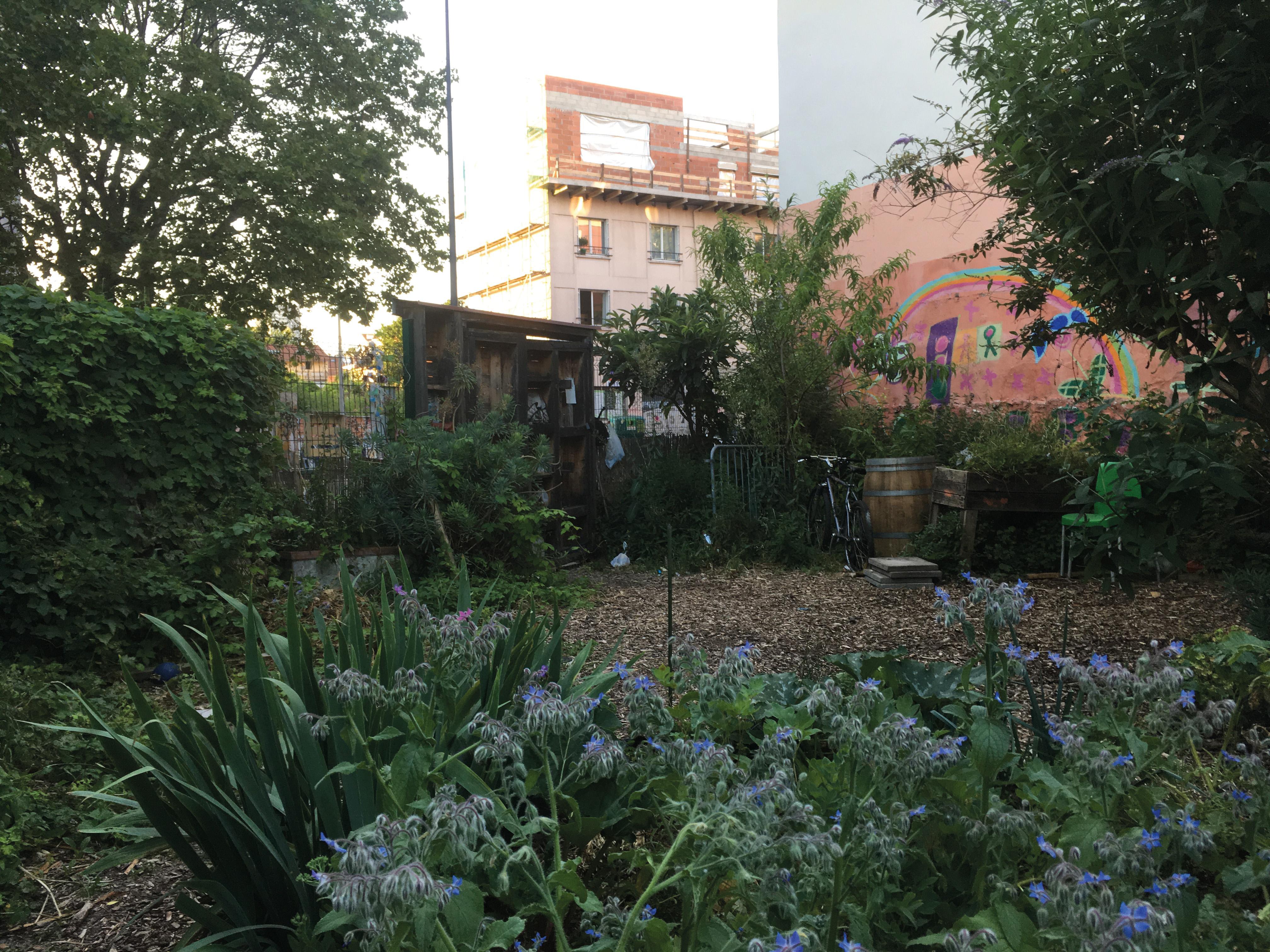 Un jardin urbain associatif à Bagnolet (93) : massifs fleuris et productions alimentaires. La ville encourage l'établissement d'un lien social