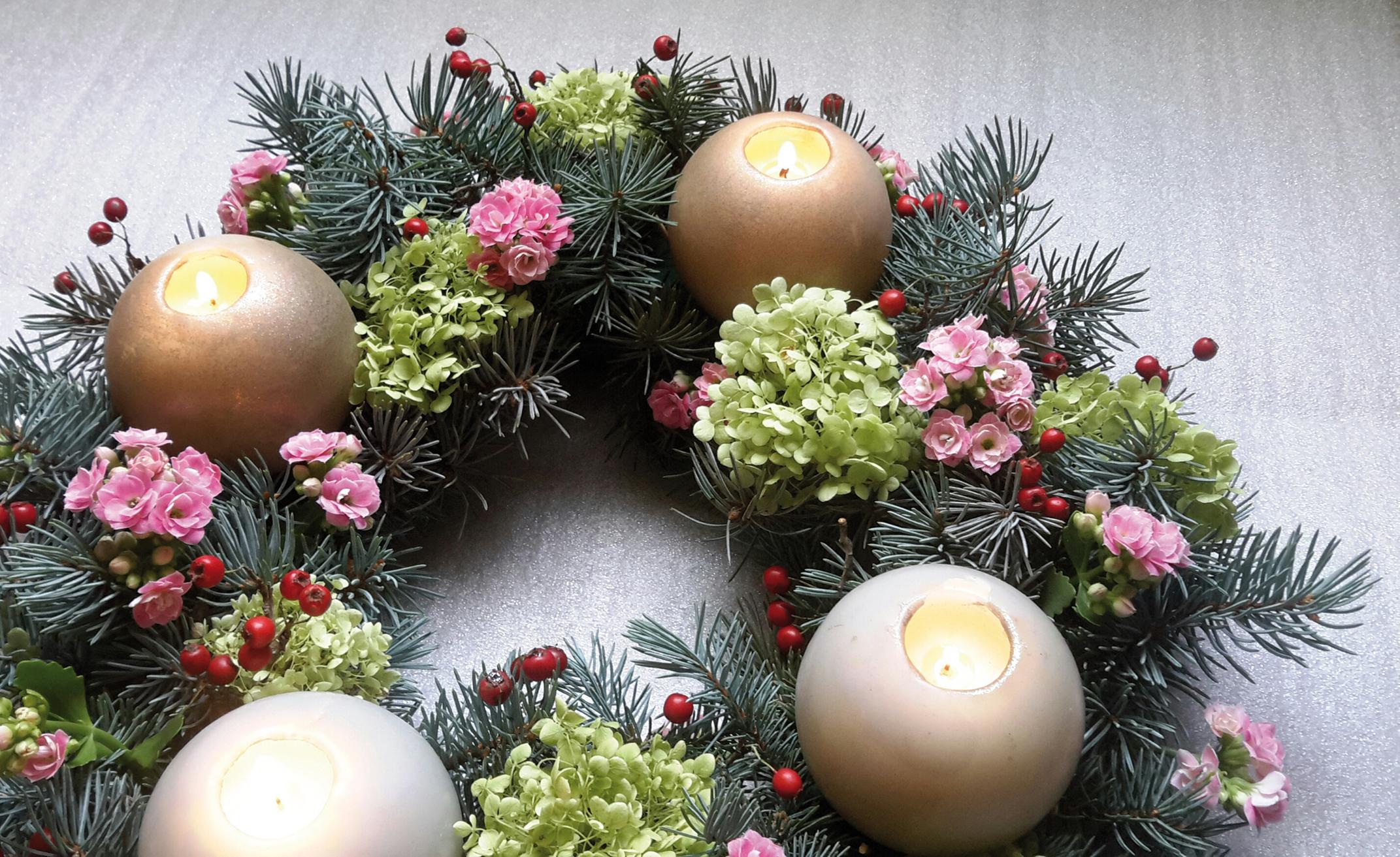 """Pour réaliser une couronne de l'Avent colorée, vous pourrez utiliser de l'épicéa bleu (Picea pungens glauca), de l'Hortensia """"Annabelle"""" (Hydrangea arborescens """"Annabelle""""), du kalanchoë et des fruits d'aubépine (Crataegus oxyacantha)"""