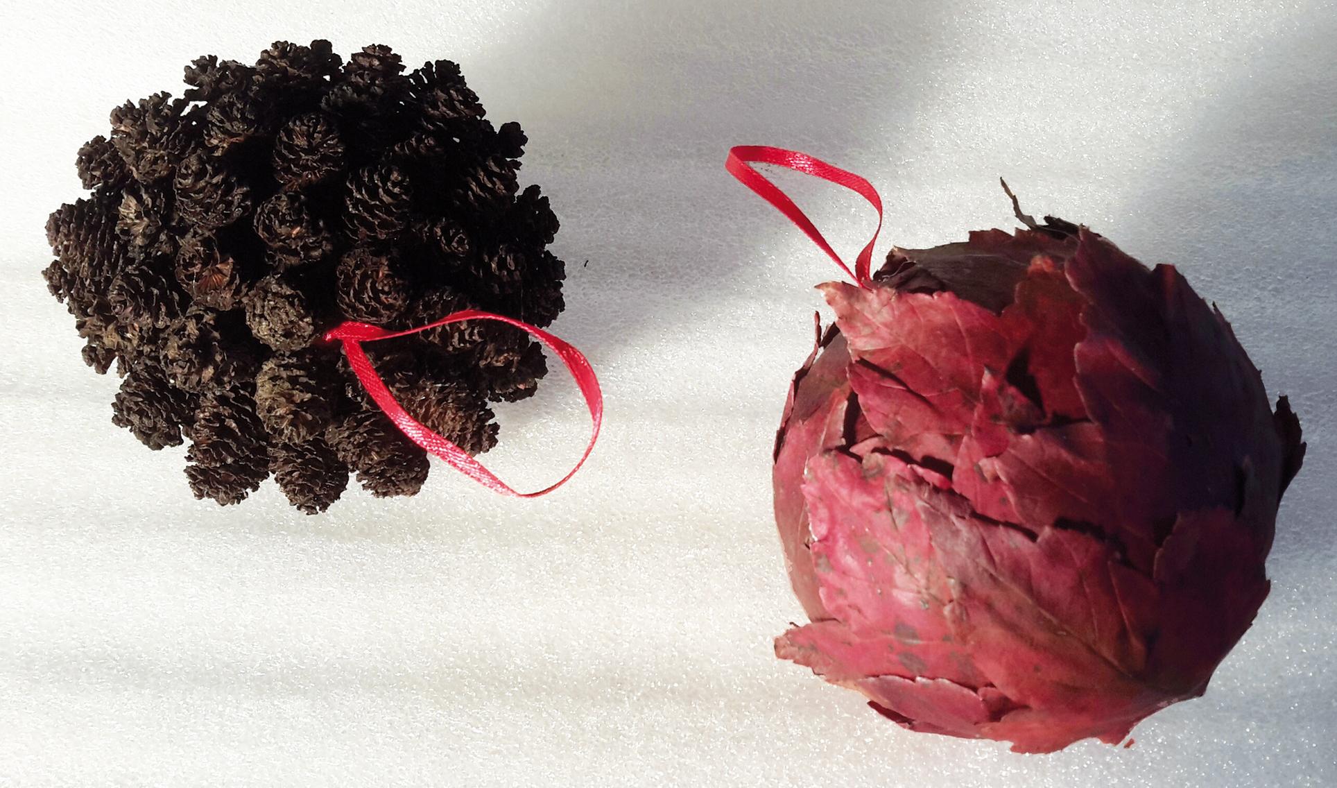 """Des feuilles d'érable rouge (Acer rubrum """"october glory"""") ont offert leur texture et leur couleur, remarquables."""