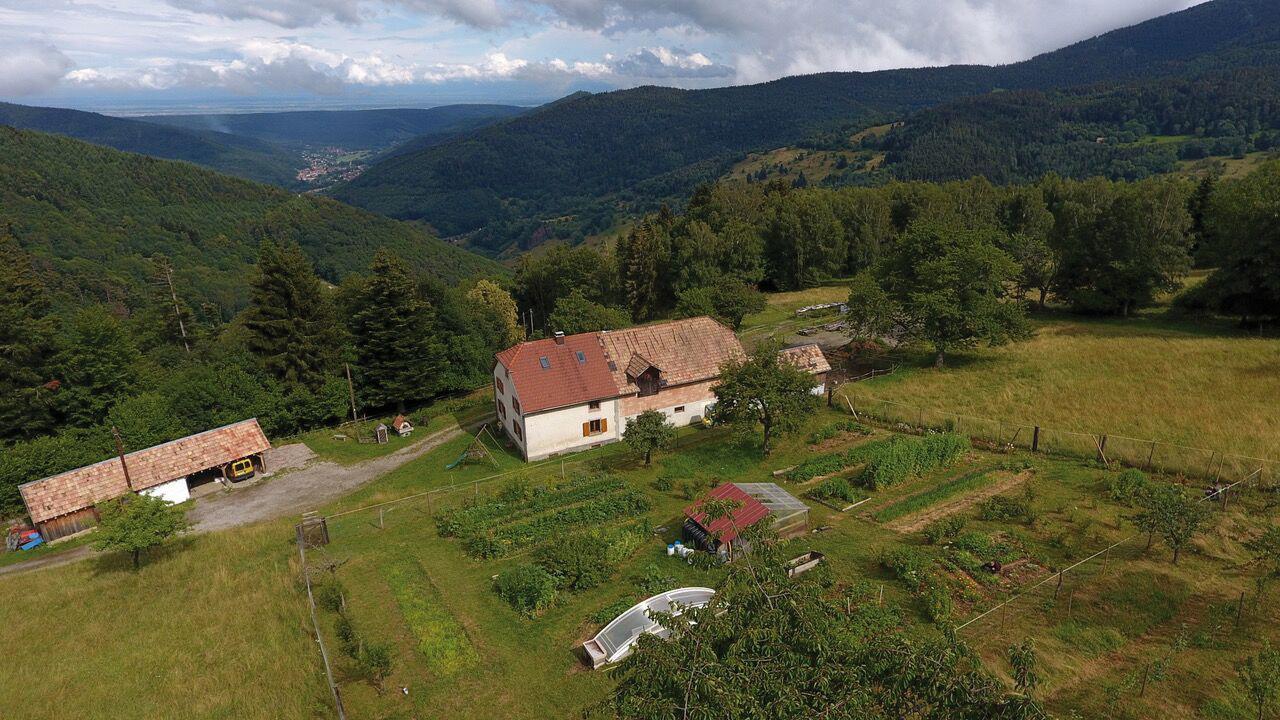 Vue aérienne du jardin de Noëlle Guillot