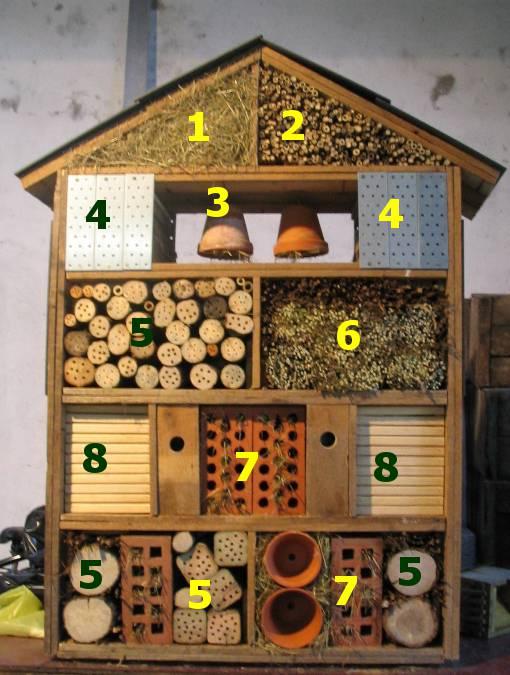 plan maison insectes