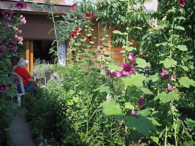 Habiter et cohabiter par l\'intermédiaire de son jardin - Jardins de ...